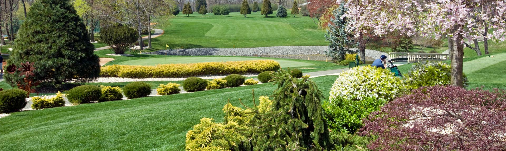 Turf and Ornamentals